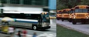 2-bus-header.jpg